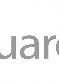 EuroSys Watchguard Gold Partner